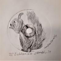 6d_JonathanK_Eichhoernchen_CD-Radierung